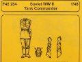Soviet WWII Tank Commander