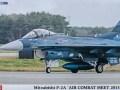 Mitsubishi F-2A Air Combat Meet 2013